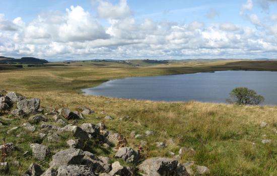 Lac de St Andéol en Aubrac