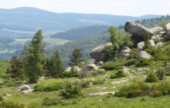 roc salte mont lozere