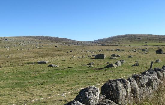 Murets de pierre de granit délimitant les prairies