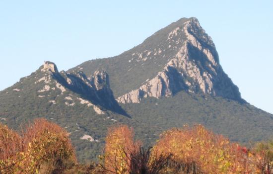 Le Pic St Loup, seigneur des garrigues