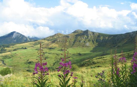 Paysage volcanique des Monts d'Ardèche