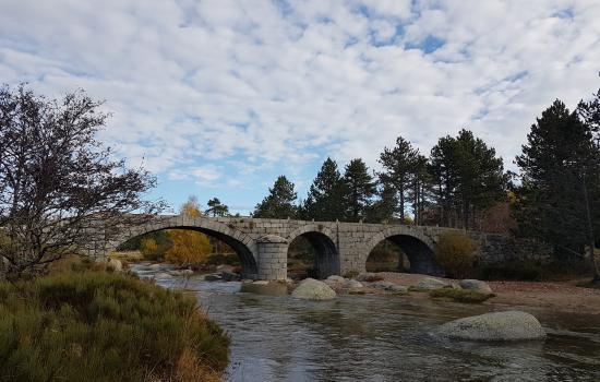 Le Pont du Tarn, sur la draille du Languedoc