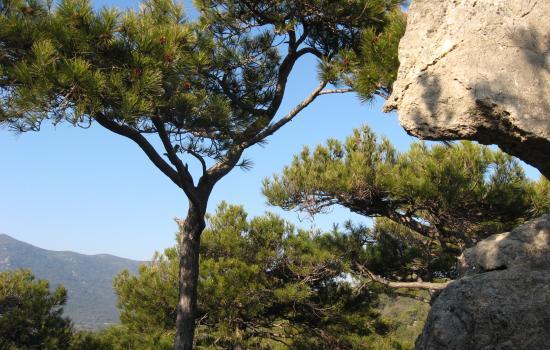 Passage dans les Monts de St Guilhem le Désert