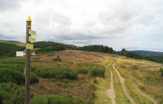 Sentiers de randonnée dans le Parc Naturel régional des Monts d'Ardèche