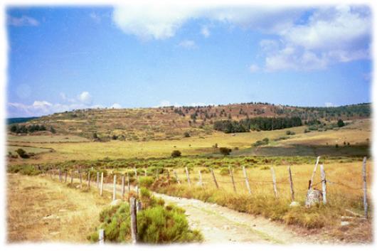 Invitation à l'evasion sur les chemins et sentiers de Margeride en Lozere
