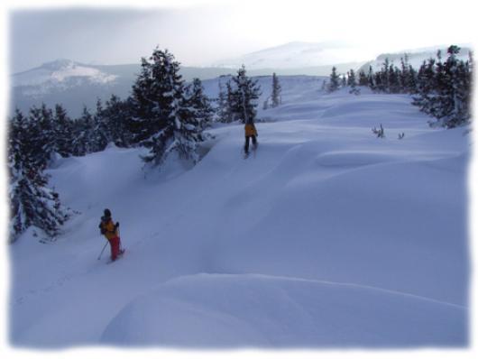 Le massif du Mézenc présente une grande variété de profils adaptés à la pratique de la raquettes à neige