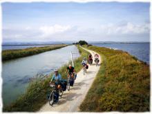 A travers les étangs du littoral entre Roussillon et Languedoc