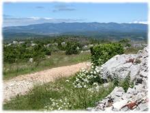 Panorama sur les Cévennes voisines