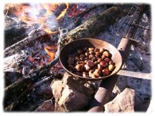 Les producteurs de chataignes perpetuent une tradition au couer des Cevennes. La culture du chataignier en terrasse a faconné les paysages cevenols