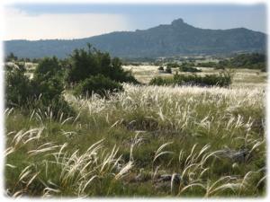 Parcours de découverte à travers le causse du Larzac